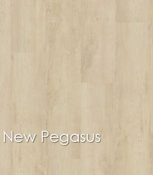 New Pegasus